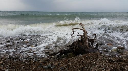 chladné a slané moře